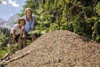 Naturentdeckungen für Groß und Klein