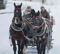 A winter carriage ride for the whole family